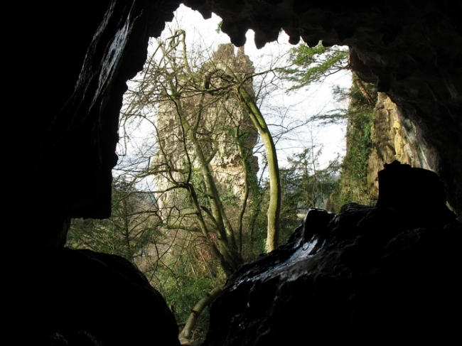 Looking out of Symonds Yat Caves
