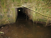 Inlet to the stream tunnel