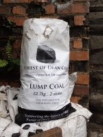 Picture 4: Forest of Dean coal